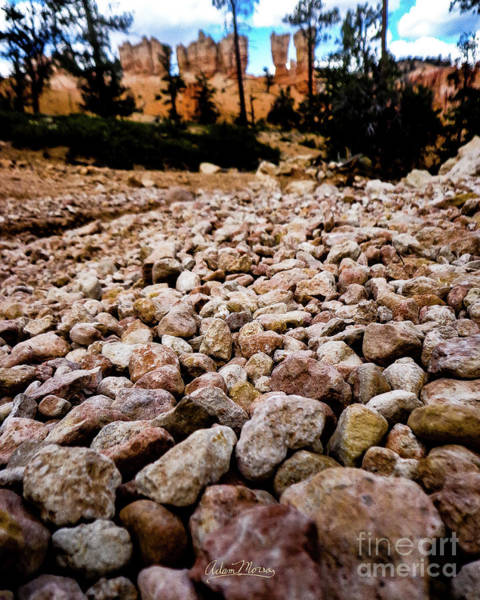 Photograph - River's Bed by Adam Morsa