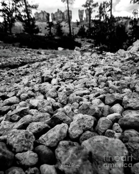 Photograph - River's Bed, Black And White by Adam Morsa