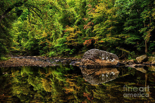 Wall Art - Photograph - Riverside Early Fall Color by Thomas R Fletcher