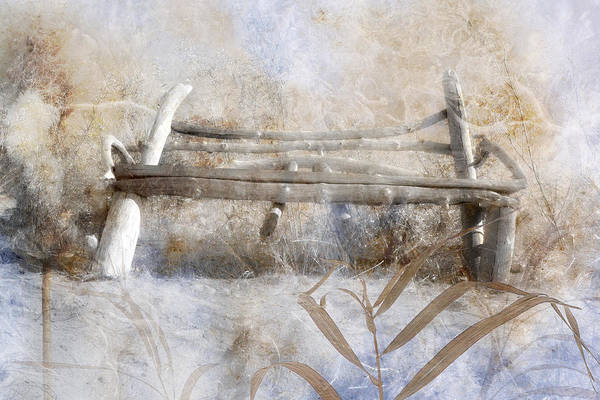 Rustic Furniture Photograph - Riverside Love Seat by Ed Hall