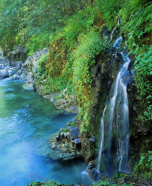 Photograph - Riverside Waterfall by Robert Potts