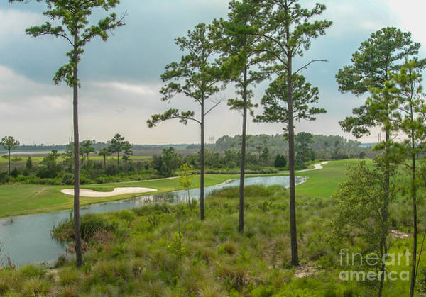 Photograph - Rivertowne Country Club Golf Course In Charleston Sc by Dale Powell