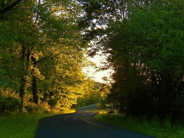 Wall Art - Photograph - Road At Sunset by Joyce Kimble Smith