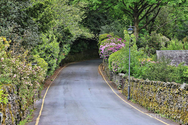 Wall Art - Photograph - Road In Lake District  6719 by Jack Schultz