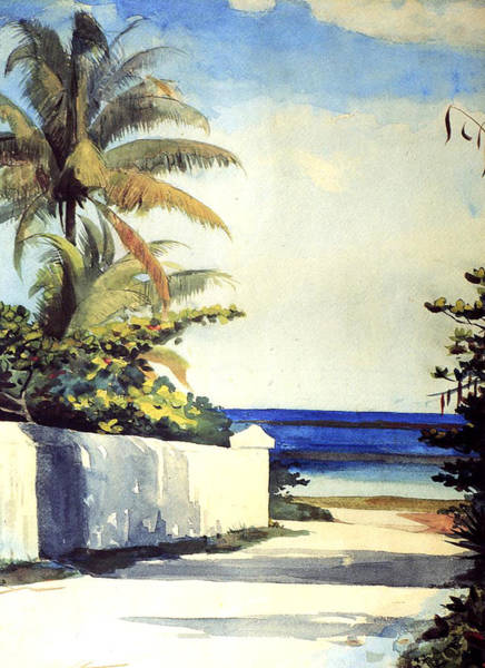 Winslow Homer Painting - Road In Nassau by Winslow Homer