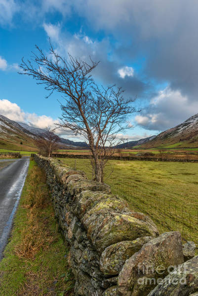 Bethesda Photograph - Road Less Travelled by Adrian Evans