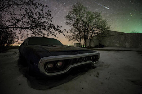 Wall Art - Photograph - Road Runner  by Aaron J Groen