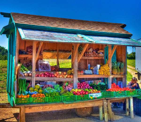 Wall Art - Photograph - Road Side Fruit Stand by William Wetmore