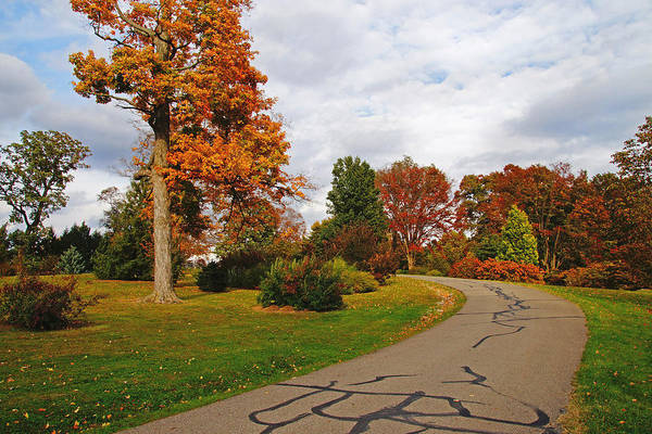 Photograph - Road Through Autumn by Mike Murdock