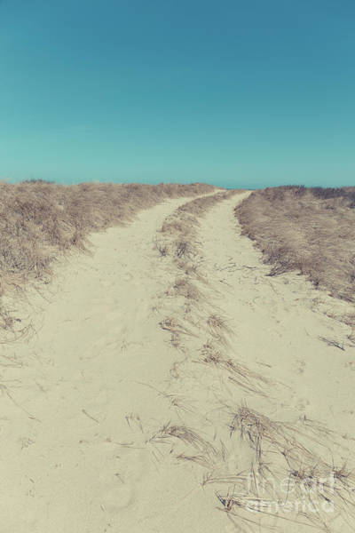 Photograph - Road Through The Sand Dunes by Edward Fielding