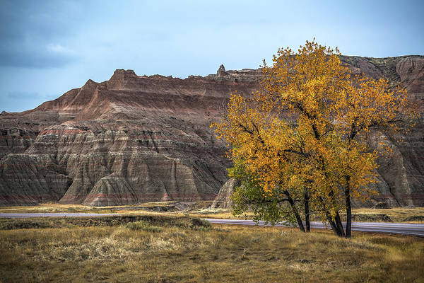 Wall Art - Photograph - Road Thru Badlands National Park by Paul Freidlund