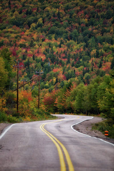 Cabot Trail Photograph - Road To Autumn by Alberto Audisio