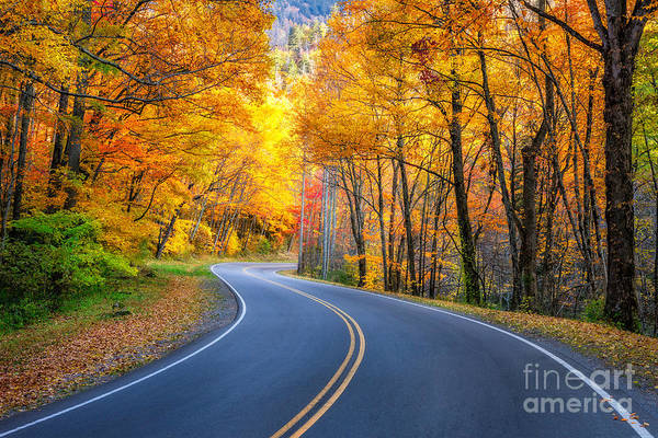 Wall Art - Photograph - Road To Autumn by Anthony Heflin