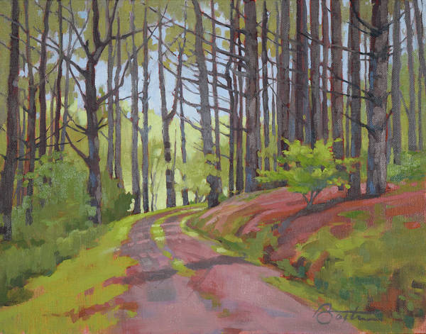 Pine Forest Painting - Road To Doc's Cabin by Todd Baxter