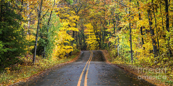 Two Harbors Photograph - Road To Good Harbor In Fall by Twenty Two North Photography