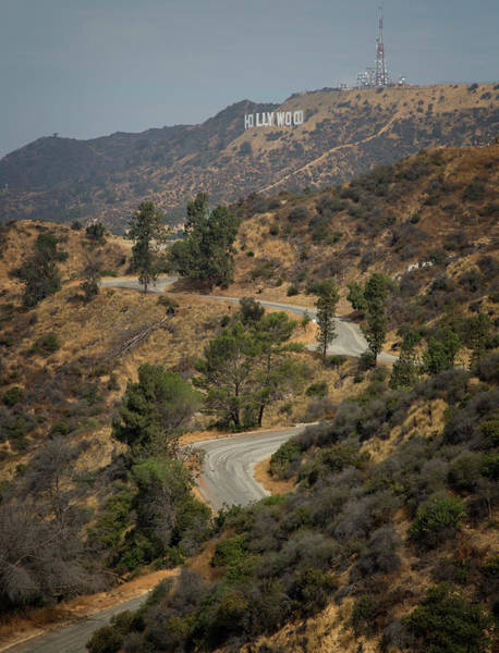 Wall Art - Photograph - Road To Hollywood by Ricky Barnard