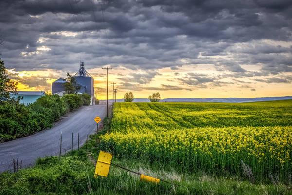 Lewiston Photograph - Road To Mann's Lake by Brad Stinson