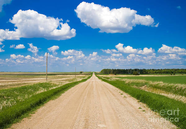 Gravel Road Photograph - Road To Nowhere by Bob Mintie