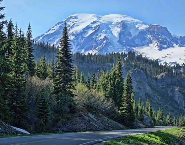 Photograph - Road To Rainier by Dan Sproul