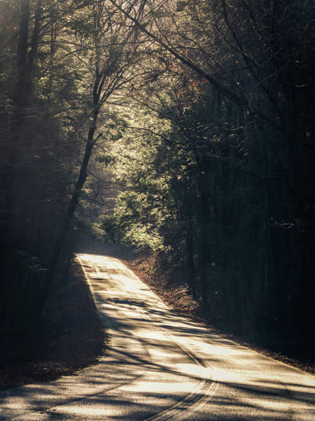Photograph - Road To Recovery by Andrea Anderegg