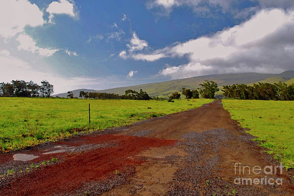 Photograph - Road To The Clouds by Bette Phelan