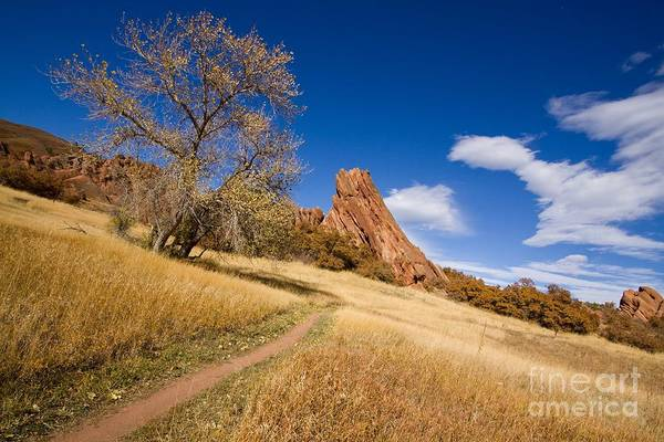 Photograph - Road To The Rocky Blue by Andrew Serff