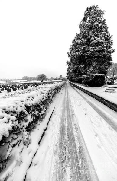 Photograph - Road To Winter by Adrian Evans