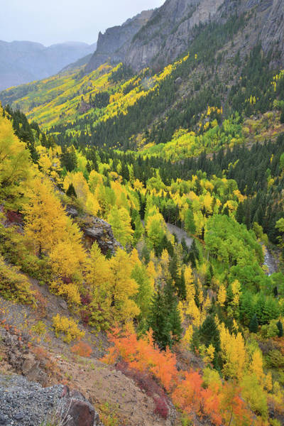 Photograph - Road To Yankee Boy Basin by Ray Mathis