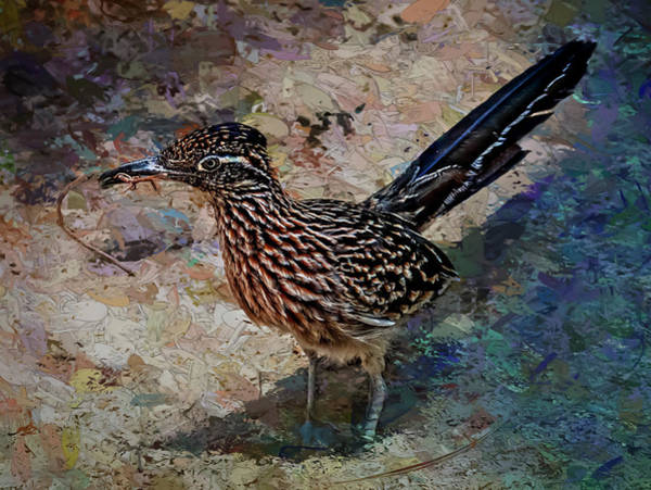 Painting - Roadrunner Making Nest by Penny Lisowski