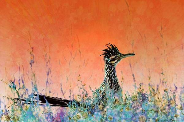 Roadrunner Painting - Roadrunner's New Mexico Sunset by Barbara Chichester