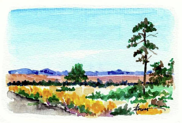 Painting - Roadside Chamisa by Adele Bower