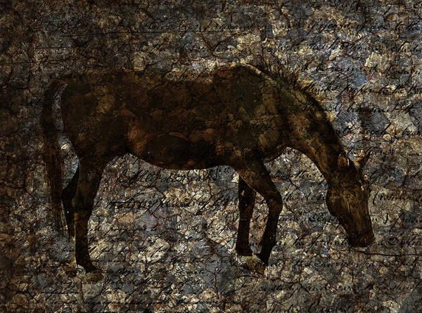 Digital Art - Roan Stallion by JGracey Stinson