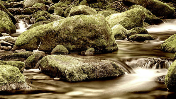 Wall Art - Photograph - Roaring Fork Mossy Rocks - Sepia by Stephen Stookey