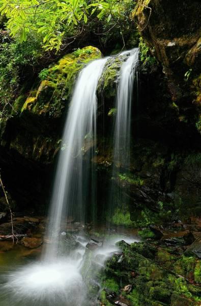 Photograph - Roaring Fork Motor Trail Grotto Falls   by Carol Montoya