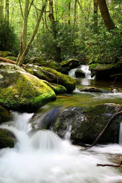 Photograph - Roaring Fork Motor Trail Waters by Carol Montoya