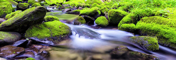 Wall Art - Photograph - Roaring Fork Serenity by Stephen Stookey