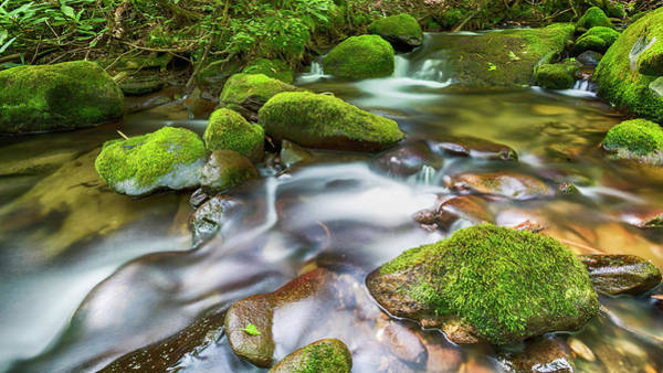 Wall Art - Photograph - Roaring Fork Waters by Stephen Stookey