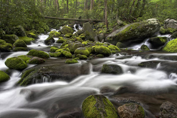 Photograph - Roaring Forks River by Ken Barrett