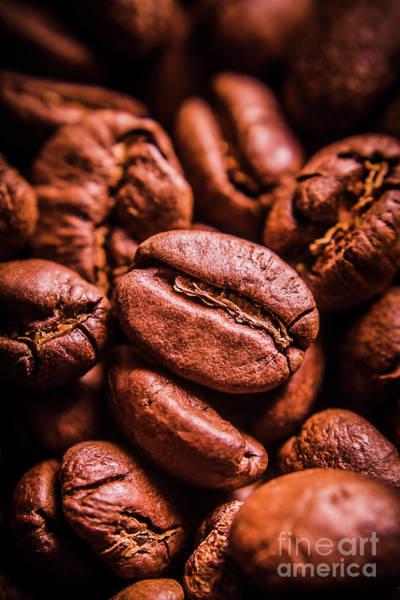 Photograph - Roasted Coffee Bean Macro by Jorgo Photography - Wall Art Gallery
