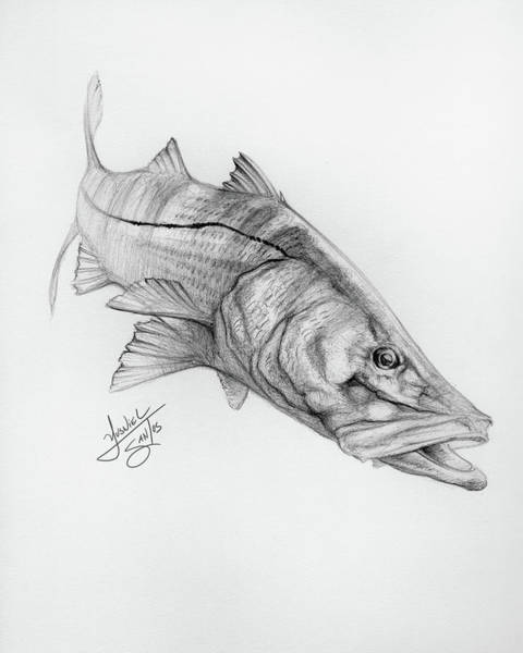 Wall Art - Digital Art - Robalo by Yusniel Santos