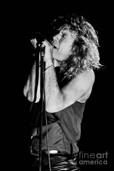 Jimmy Page Photograph - Robert Plant-0040 by Timothy Bischoff
