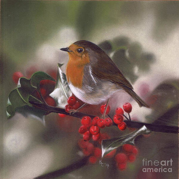Pastel - Robin And Berries by Karie-ann Cooper