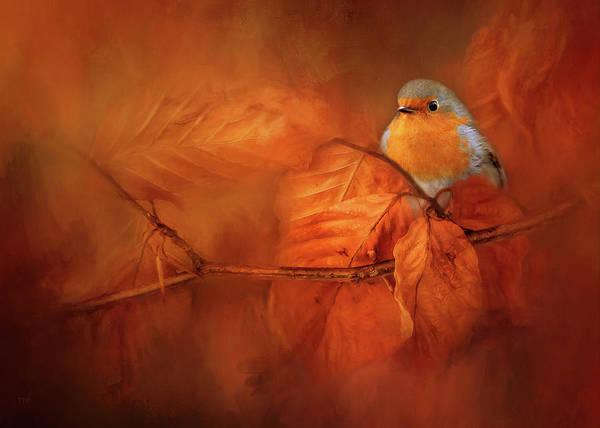 European Robin Photograph - Robin Red Breast In Autumn by Theresa Tahara