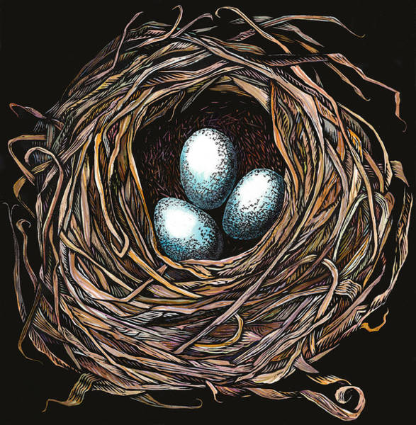 Complimentary Colors Mixed Media - Robin's Nest II by Carrie Carlson