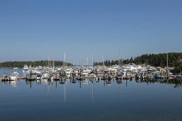 Wall Art - Photograph - Roche Harbor, Washington by Stephanie McDowell