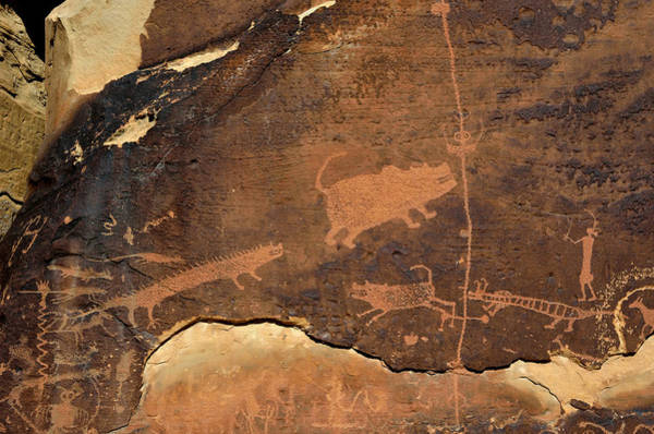 Photograph - Rochester Creek Petroglyph Panel Animals by Tranquil Light  Photography