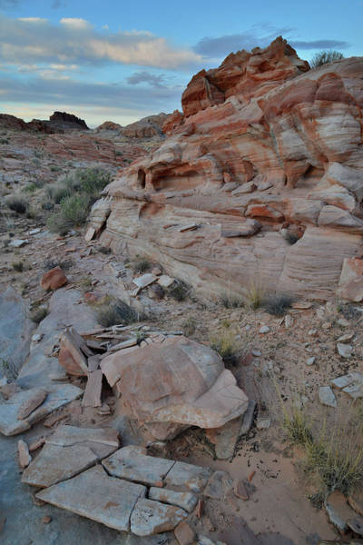 Photograph - Rock Castle In Valley Of Fire by Ray Mathis