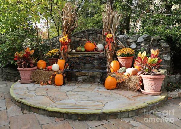 Photograph - Rock City Autumn Bench by Carol Groenen