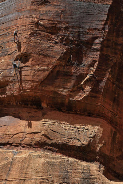 Wall Art - Photograph - Rock Climbing In Zion by Donna Kennedy