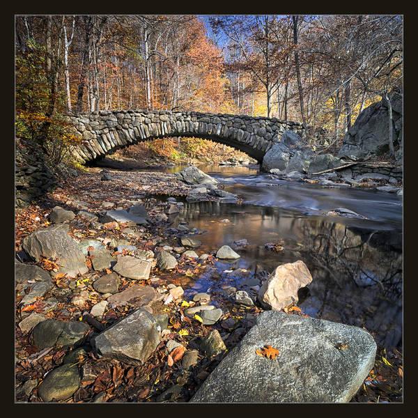 Arboretums Photograph - Rock Creek Park by Robert Fawcett